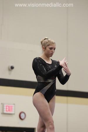 Gymnastics 2014