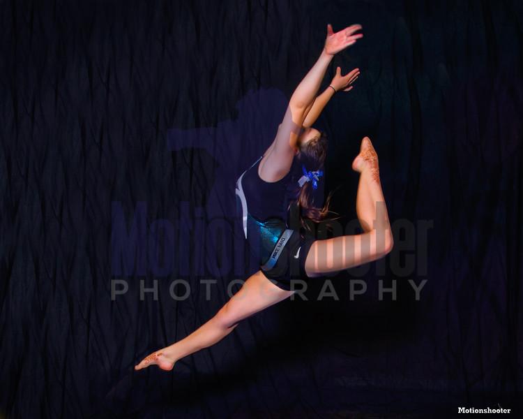 More Gold Coast Gymnastics