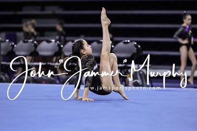 Rose City Gymnastics Meet