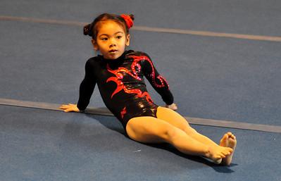 gymnastics 1-8-11-013