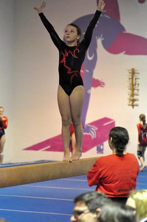 gymnastics 1-8-11-087