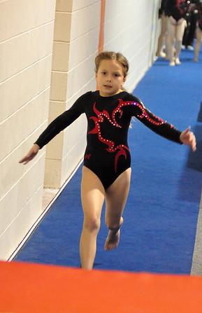 gymnastics 1-8-11-030