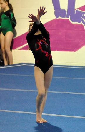 gymnastics 1-8-11-017