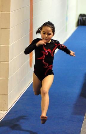 gymnastics 1-8-11-090