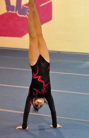 gymnastics 1-8-11-006