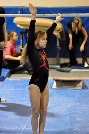 gymnastics 1-8-11-060