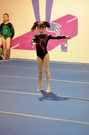 gymnastics 1-8-11-001