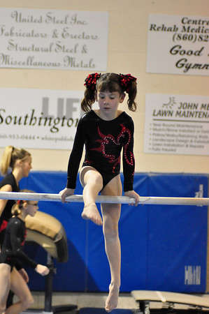 gymnastics 1-8-11-078