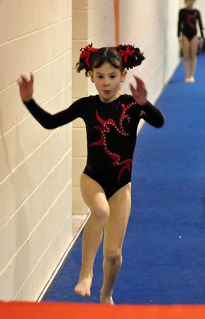 gymnastics 1-8-11-091