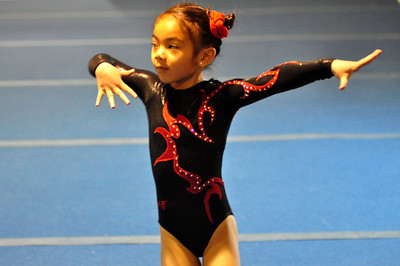 gymnastics 1-8-11-038