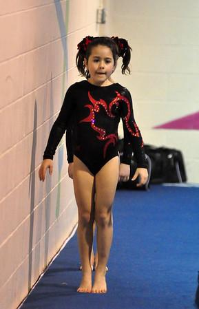 gymnastics 1-8-11-039