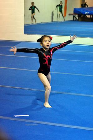 gymnastics 1-8-11-014