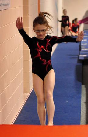 gymnastics 1-8-11-080