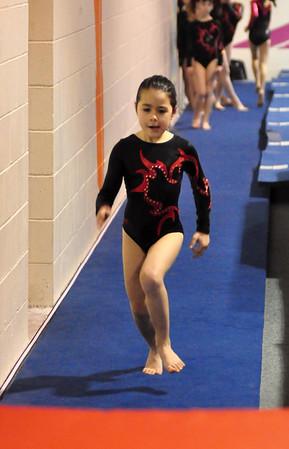 gymnastics 1-8-11-027