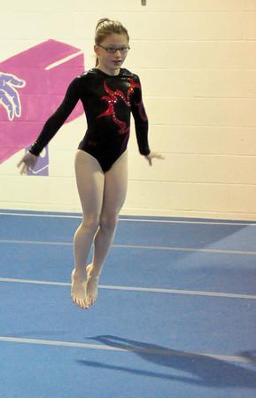 gymnastics 1-8-11-007