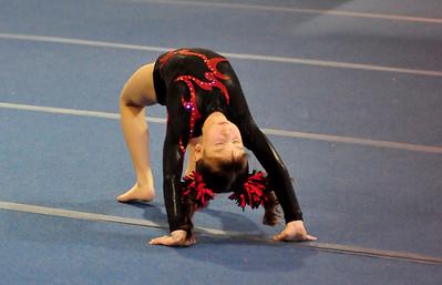 gymnastics 1-8-11-002