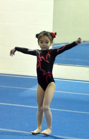 gymnastics 1-8-11-036