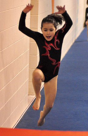 gymnastics 1-8-11-093
