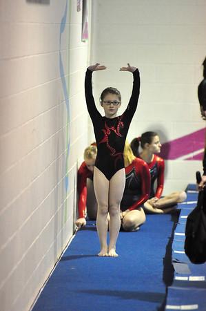 gymnastics 1-8-11-082