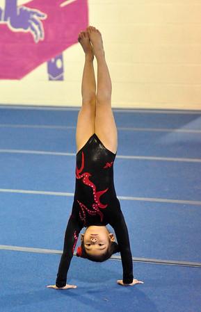 gymnastics 1-8-11-021