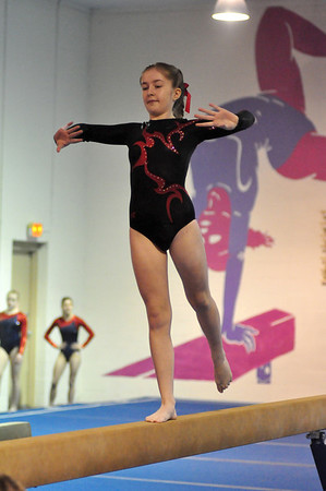 gymnastics 1-8-11-095