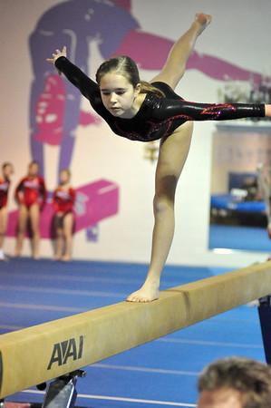 gymnastics 1-8-11-088
