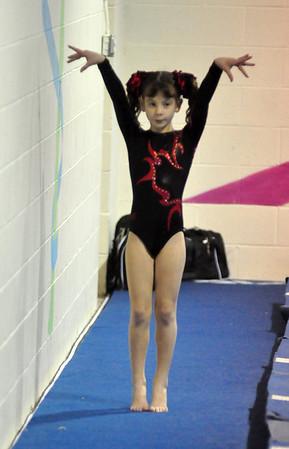 gymnastics 1-8-11-092