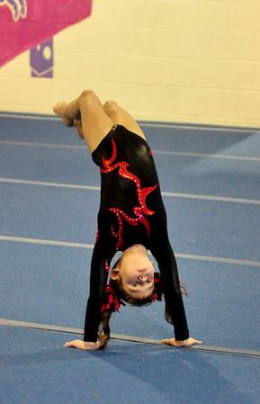 gymnastics 1-8-11-003