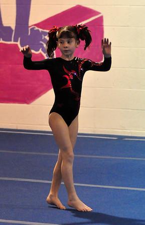 gymnastics 1-8-11-022