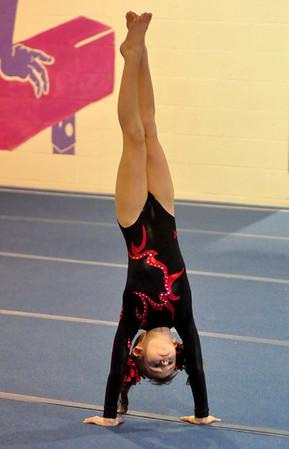 gymnastics 1-8-11-004