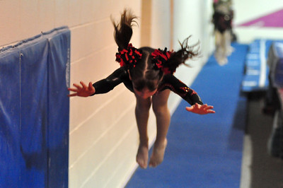 gymnastics 1-8-11-026