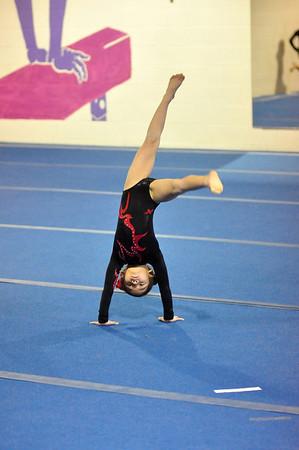 gymnastics 1-8-11-020