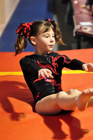 gymnastics 1-8-11-042