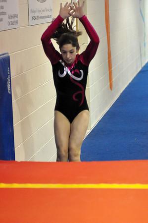 gymnastics 1-8-11-089