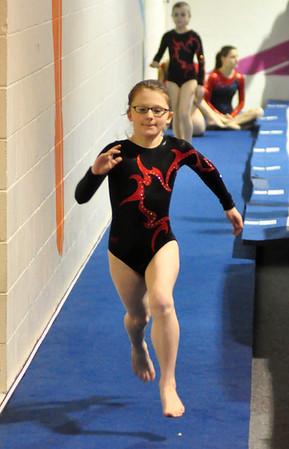 gymnastics 1-8-11-081