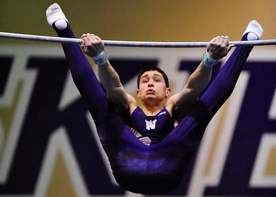 UW Mens Gymnastics WA Open