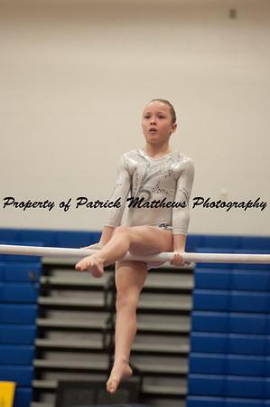 2014-04-05 YMCA Gymnastics States session 1 (135 of 775)