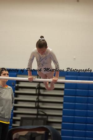 2014-04-05 YMCA Gymnastics States session 1 (148 of 775)