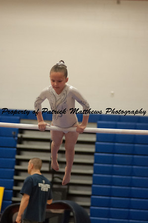 2014-04-05 YMCA Gymnastics States session 1 (146 of 775)