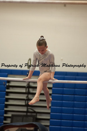2014-04-05 YMCA Gymnastics States session 1 (145 of 775)