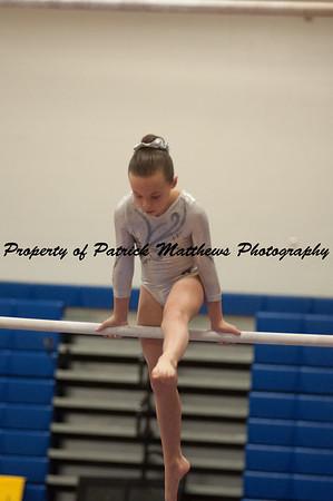 2014-04-05 YMCA Gymnastics States session 1 (163 of 775)