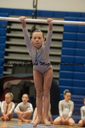 2014-04-05 YMCA Gymnastics States session 1 (155 of 775)