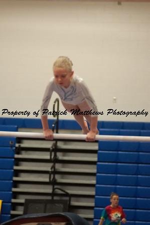 2014-04-05 YMCA Gymnastics States session 1 (119 of 775)
