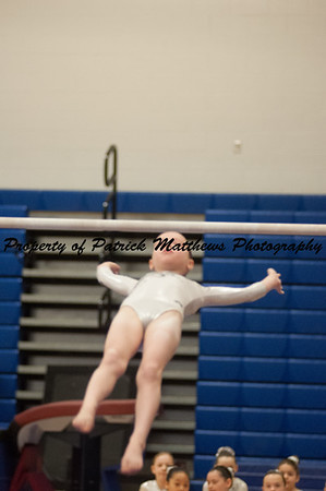 2014-04-05 YMCA Gymnastics States session 1 (108 of 775)
