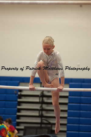 2014-04-05 YMCA Gymnastics States session 1 (113 of 775)