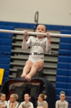 2014-04-05 YMCA Gymnastics States session 1 (156 of 775)