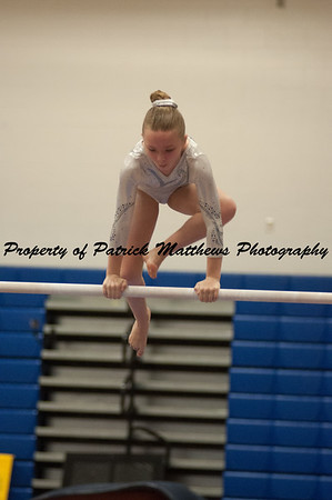 2014-04-05 YMCA Gymnastics States session 1 (131 of 775)
