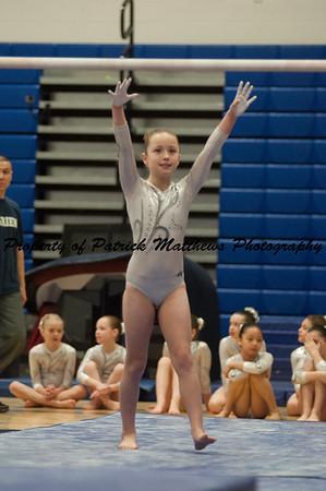 2014-04-05 YMCA Gymnastics States session 1 (123 of 775)