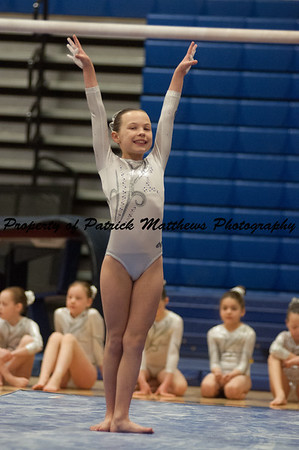 2014-04-05 YMCA Gymnastics States session 1 (153 of 775)