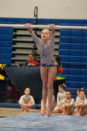 2014-04-05 YMCA Gymnastics States session 1 (110 of 775)